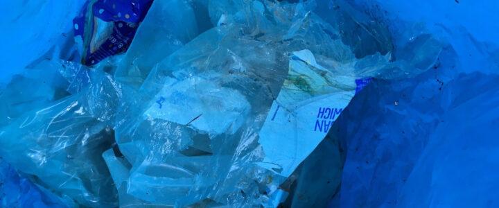 Einfach Müll sammeln