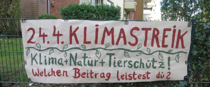 5. Klimastreik – im Netz